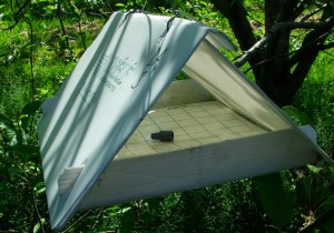 Delta-style insect monitoring trap with synthetic pheromone and sticky liner