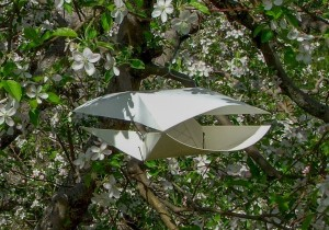 Wing-style insect monitoring trap in apple orchard