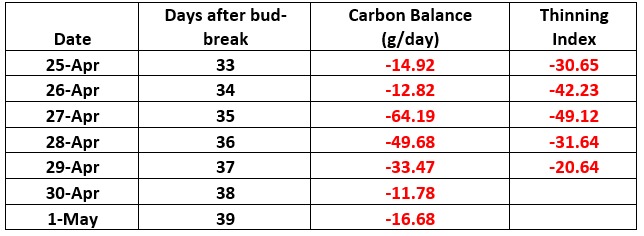 Carbon balance and Thinning index at X days after bud break