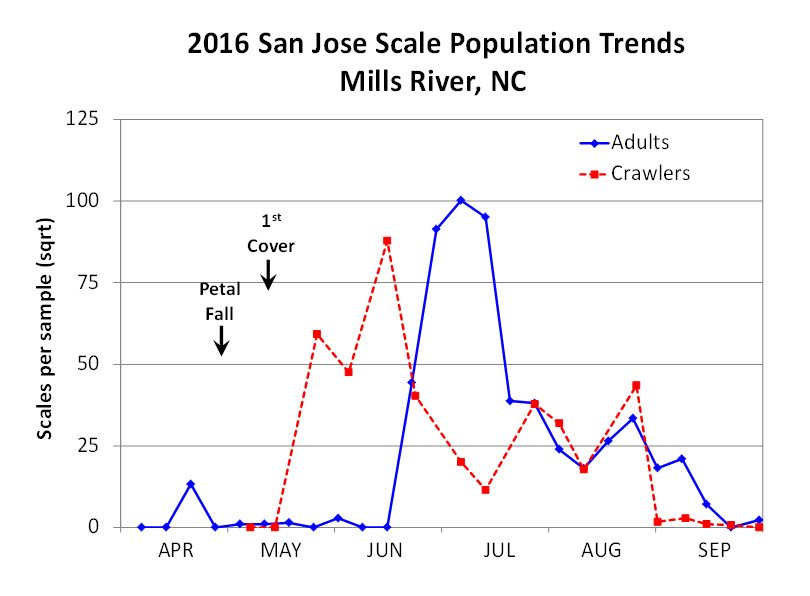 Graph of San Jose scale population trends