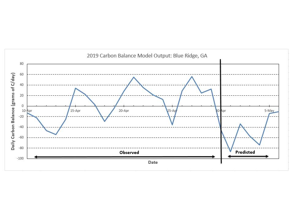 Blue Ridge Carbon Balance chart image