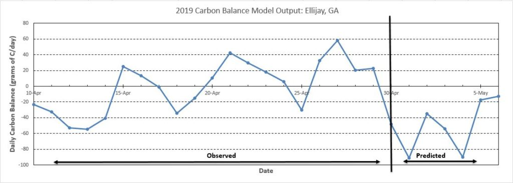 Ellijay Carbon Balance Model chart image