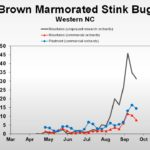 Insect population trend graph