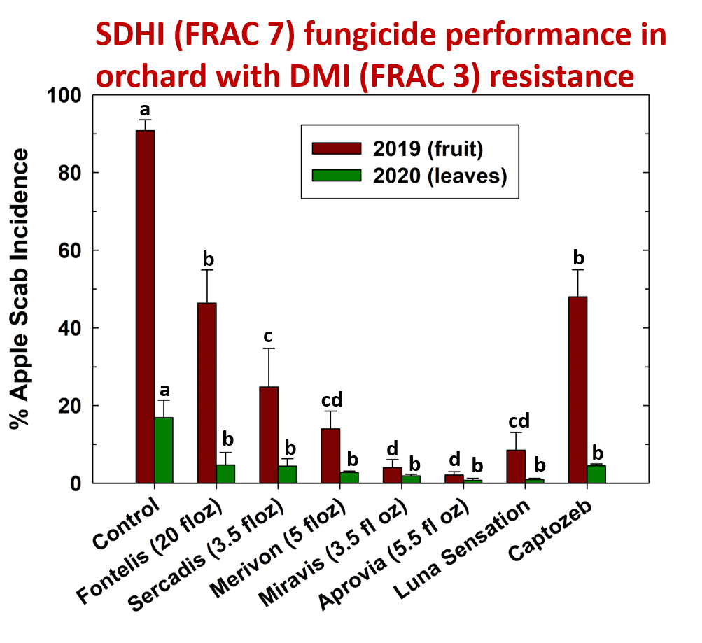 Performance of SDHI Fungicides against apple scab on apple