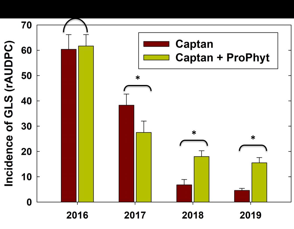 captan and prophyt efficacy against GLS