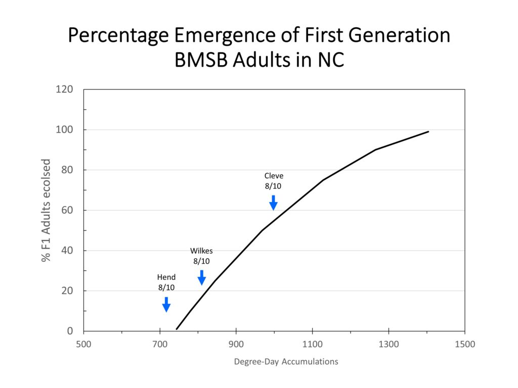 Chart showing brown marmorated stink bug emergence