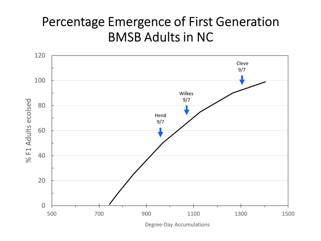 Chart showing brown marmorated stink bug population trends